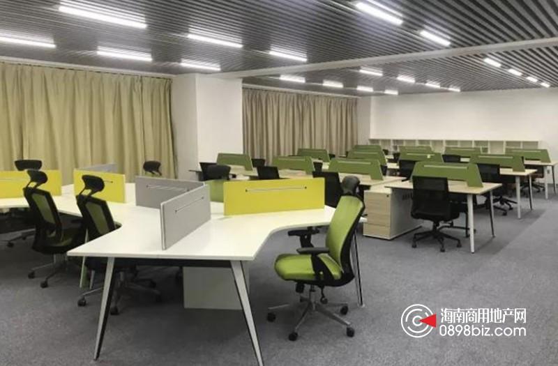 海豚众创空间•龙华区•滨海国际金融中心